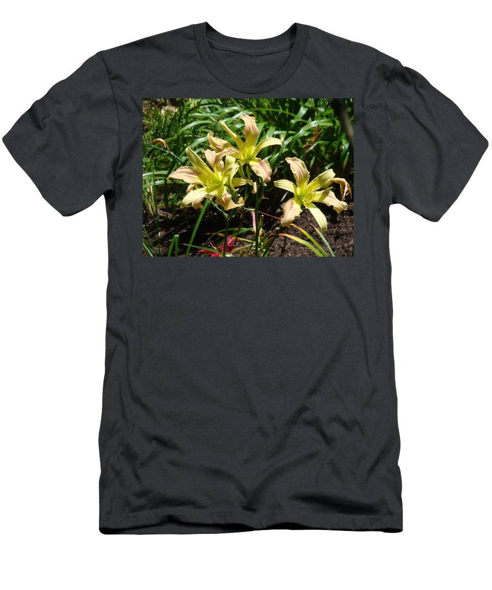 Daylily T-Shirt featuring the photograph A Blush of Summer by Jean Blackmer