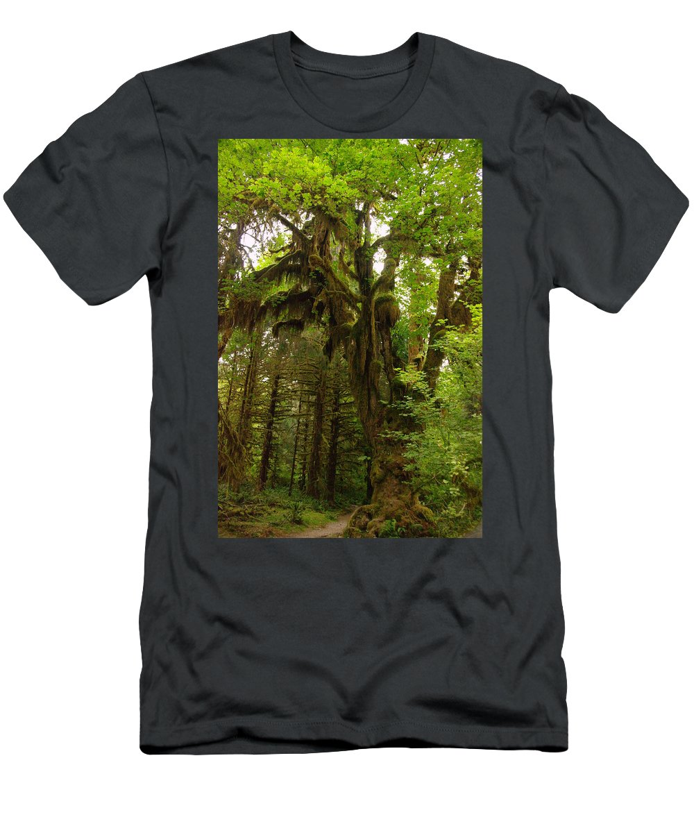 Trees Men's T-Shirt (Athletic Fit) featuring the photograph A Moss Covered Tree In The Ho National Rain Forest by Jeff Swan