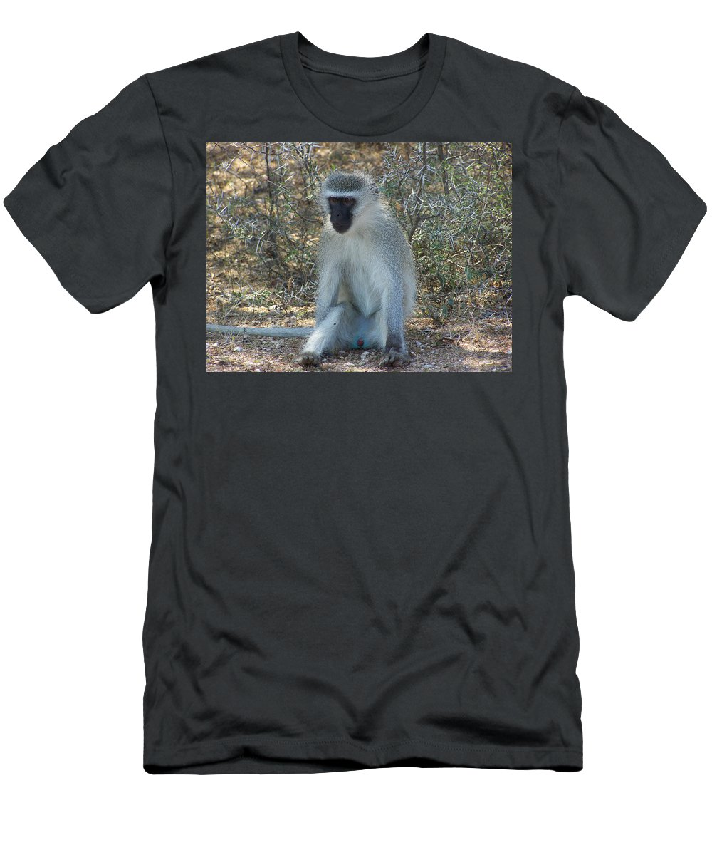 Vervet Monkey Men's T-Shirt (Athletic Fit) featuring the photograph A Time To Relax by Douglas Barnard