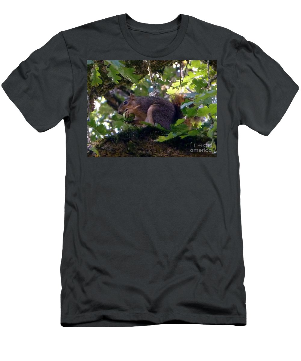 Squirrel Has Tight Grip On Acorn High Up In The Tree Men's T-Shirt (Athletic Fit) featuring the photograph Acorn Grip by Susan Garren