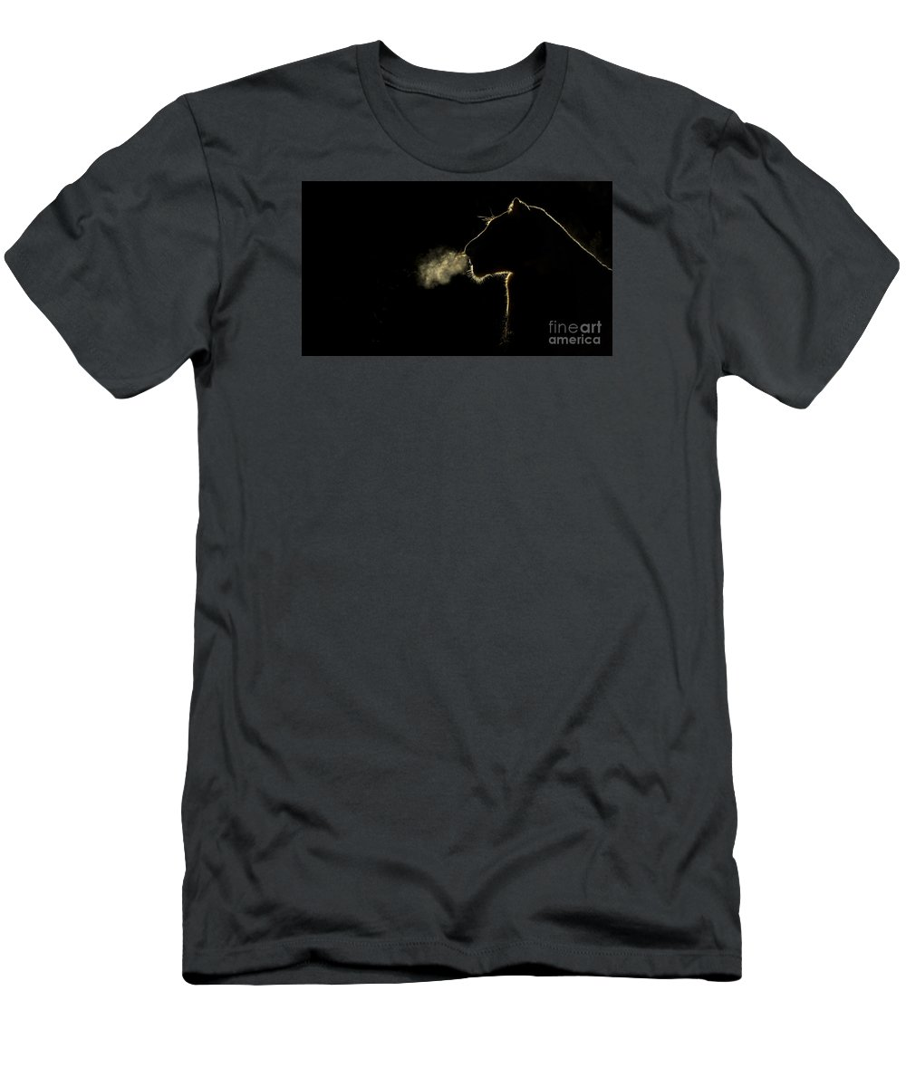 Nis T-Shirt featuring the photograph African Lioness Breath Sabi Sands South by Brendon Cremer