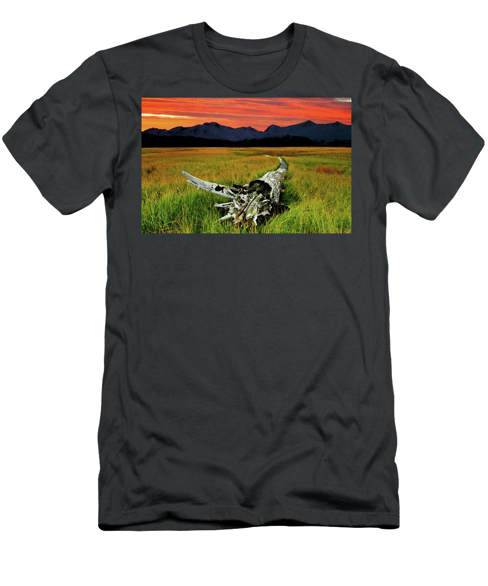 An Old Tree Men's T-Shirt (Athletic Fit) featuring the photograph Aging Beautifully by Ron Day