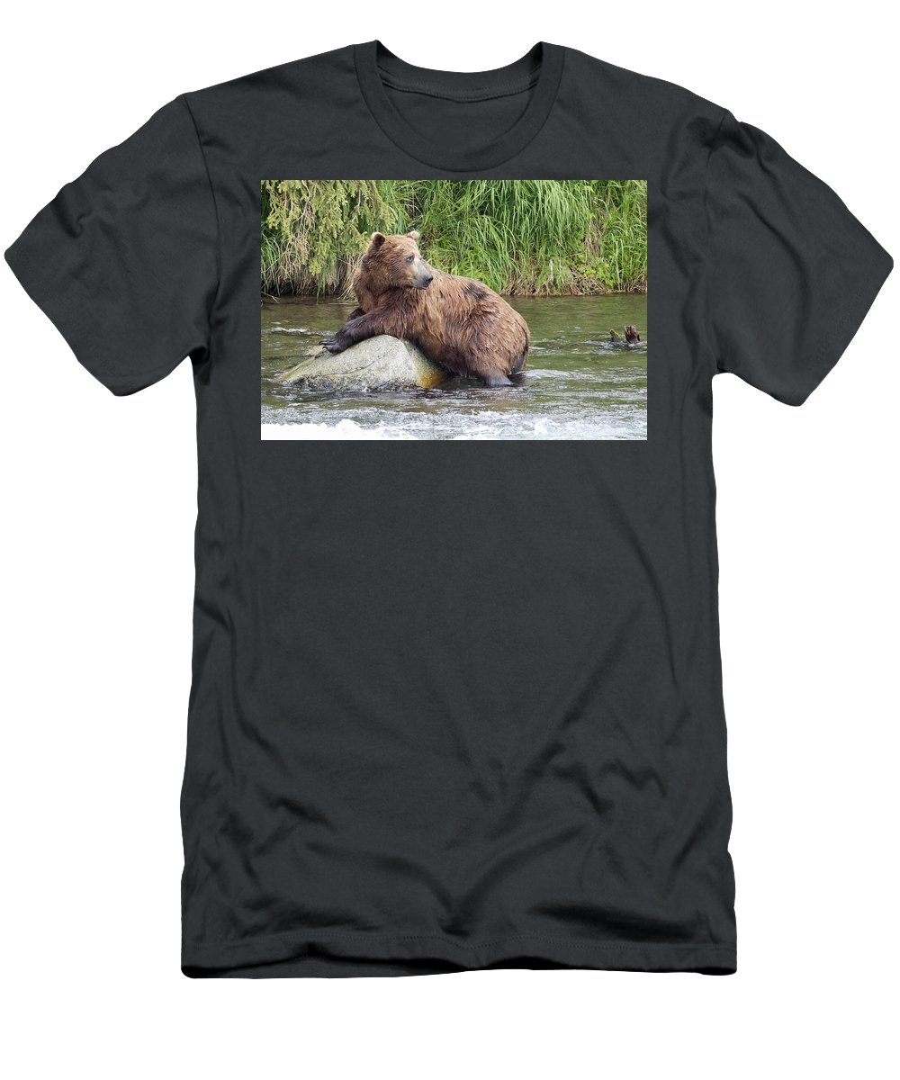 Alaska Men's T-Shirt (Athletic Fit) featuring the photograph Alaskan Grizzly by Dee Carpenter
