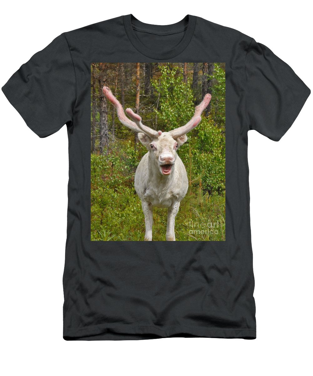 Albino Reindeer Archival Print Men's T-Shirt (Athletic Fit) featuring the photograph Albino Reindeer by Mae Wertz