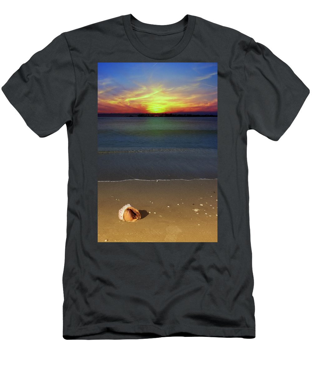 Seashell Men's T-Shirt (Athletic Fit) featuring the photograph All Washed Up by Regina Williams