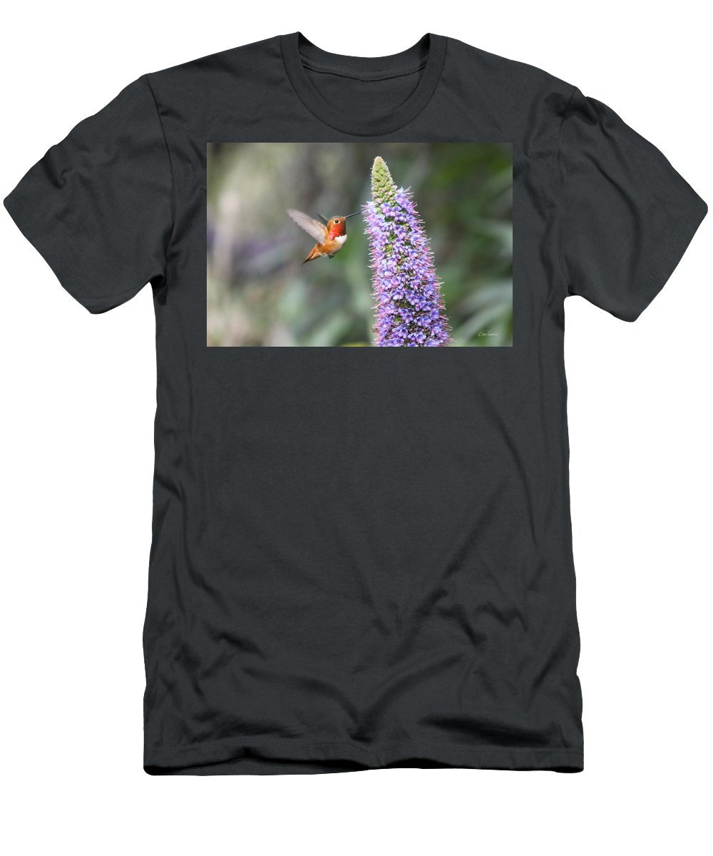 Allen Men's T-Shirt (Athletic Fit) featuring the photograph Allen Hummingbird On Flower by Diana Haronis