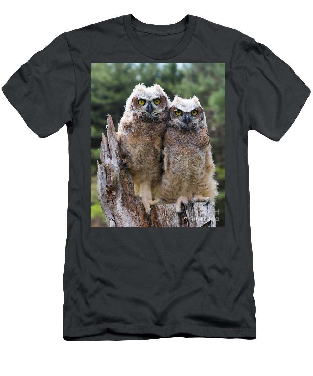 Great Horned Owl Men's T-Shirt (Athletic Fit) featuring the photograph Ally And Olly by Barbara McMahon