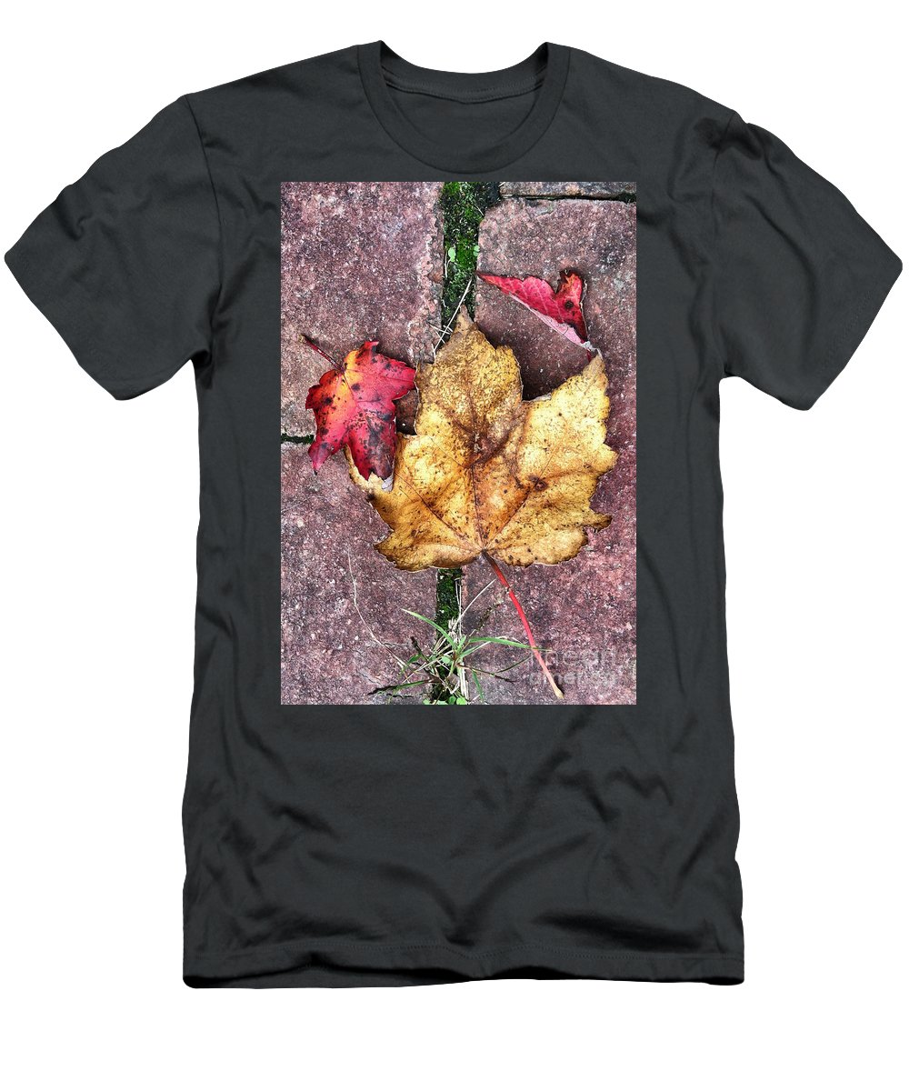 Leaves Men's T-Shirt (Athletic Fit) featuring the photograph Along The Path by Kerri Farley