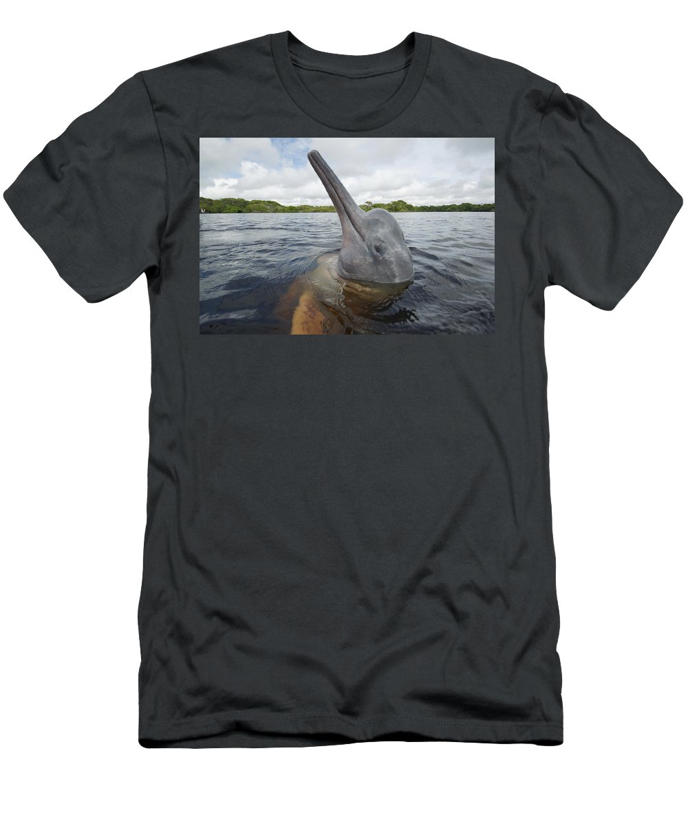Feb0514 Men's T-Shirt (Athletic Fit) featuring the photograph Amazon River Dolphin Spy-hopping Rio by Hiroya Minakuchi