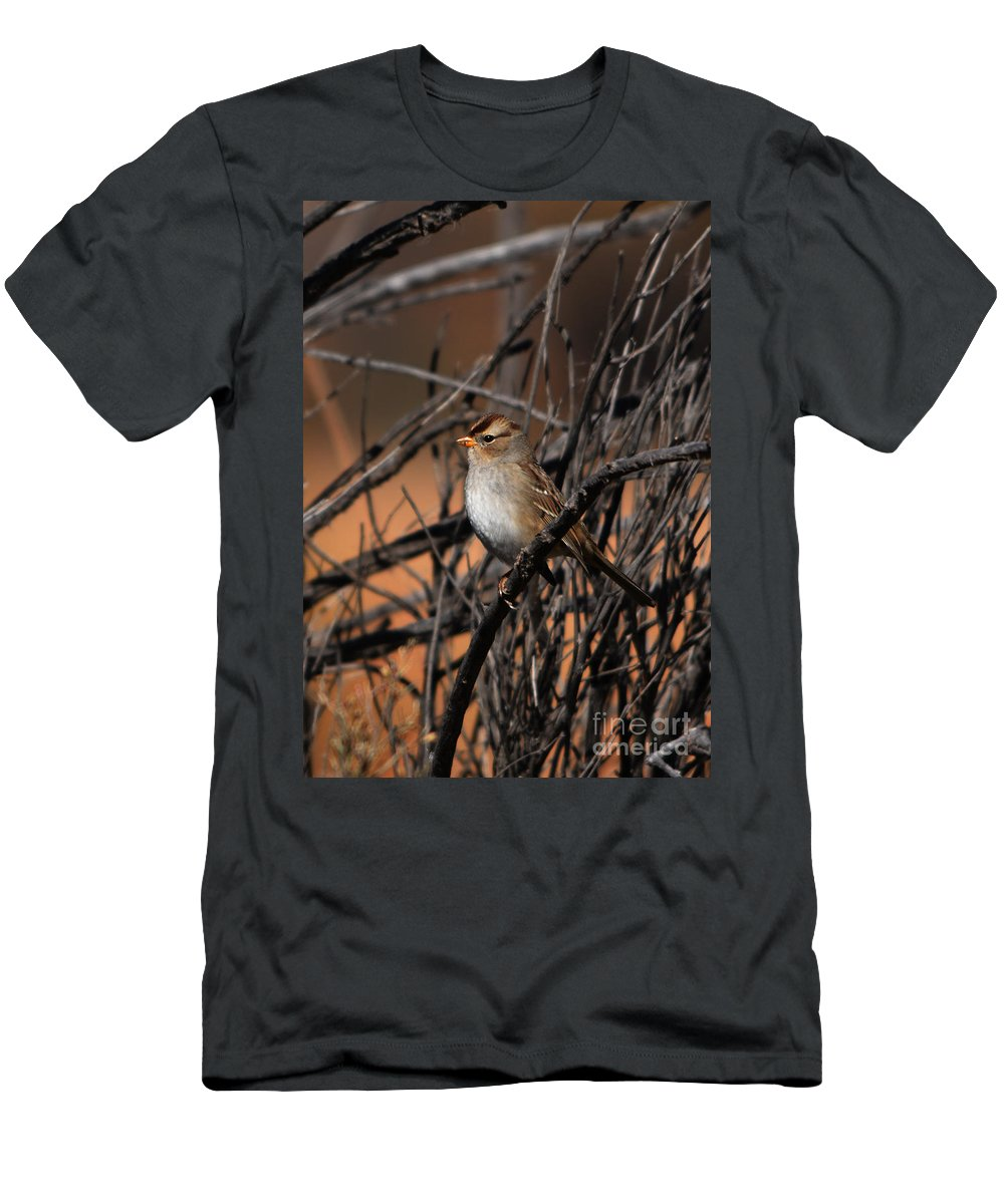 American Tree Sparrow Men's T-Shirt (Athletic Fit) featuring the photograph American Tree Sparrow by John Greco