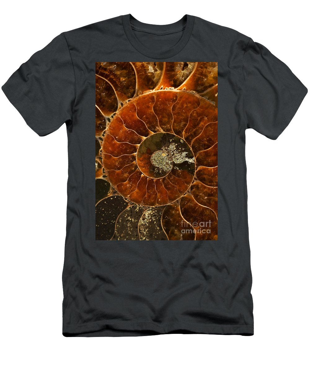 Ammonite Men's T-Shirt (Athletic Fit) featuring the photograph An Ancient Treasure Vi by Jaroslaw Blaminsky