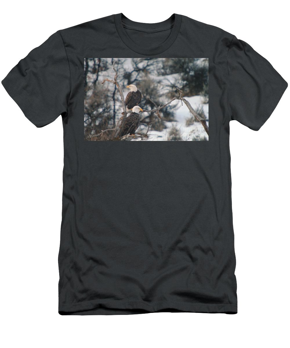 Eagles Men's T-Shirt (Athletic Fit) featuring the photograph An Eagle Pair by Jeff Swan