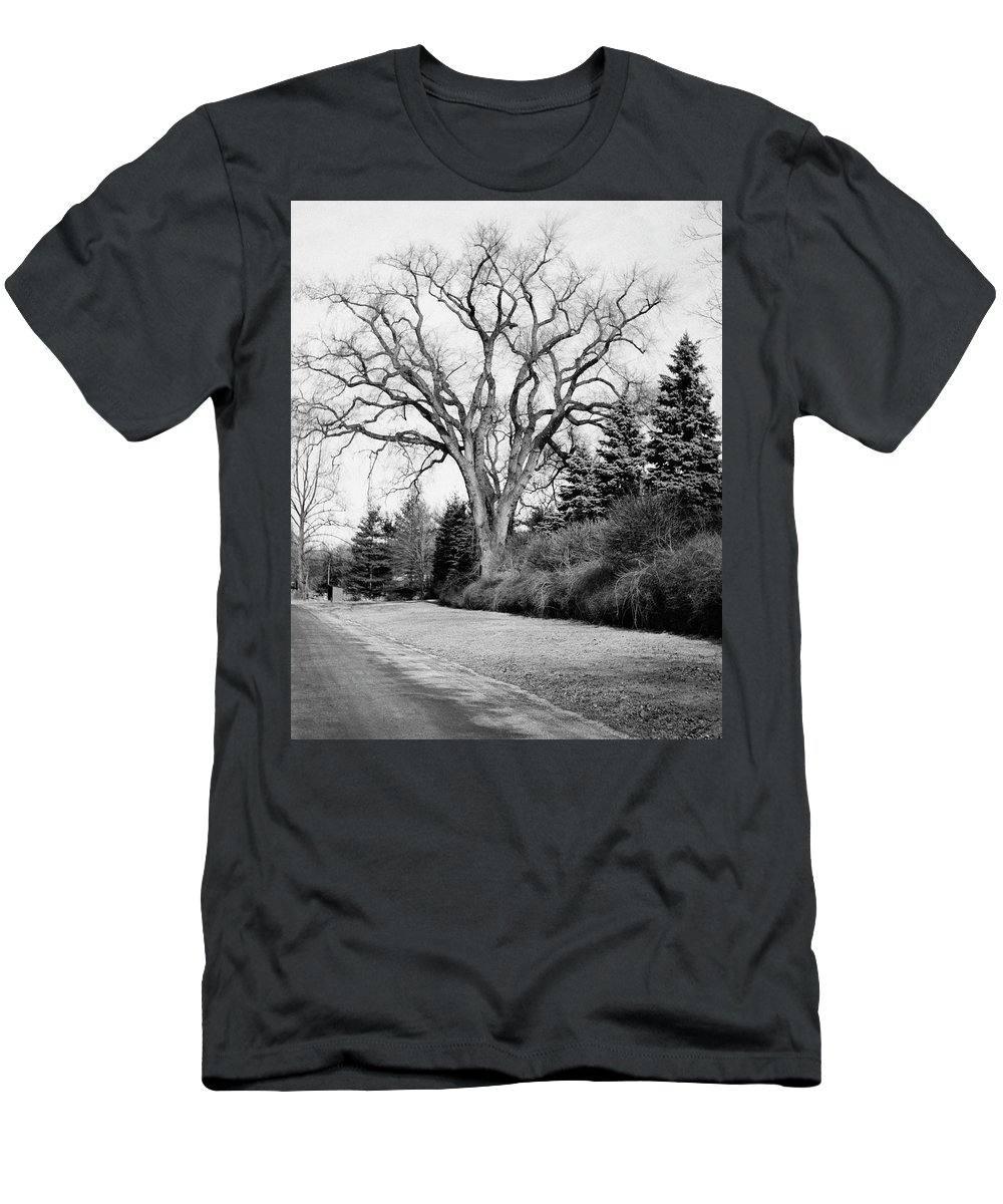 Exterior Men's T-Shirt (Athletic Fit) featuring the photograph An Elm Tree At The Side Of A Road by Tom Leonard
