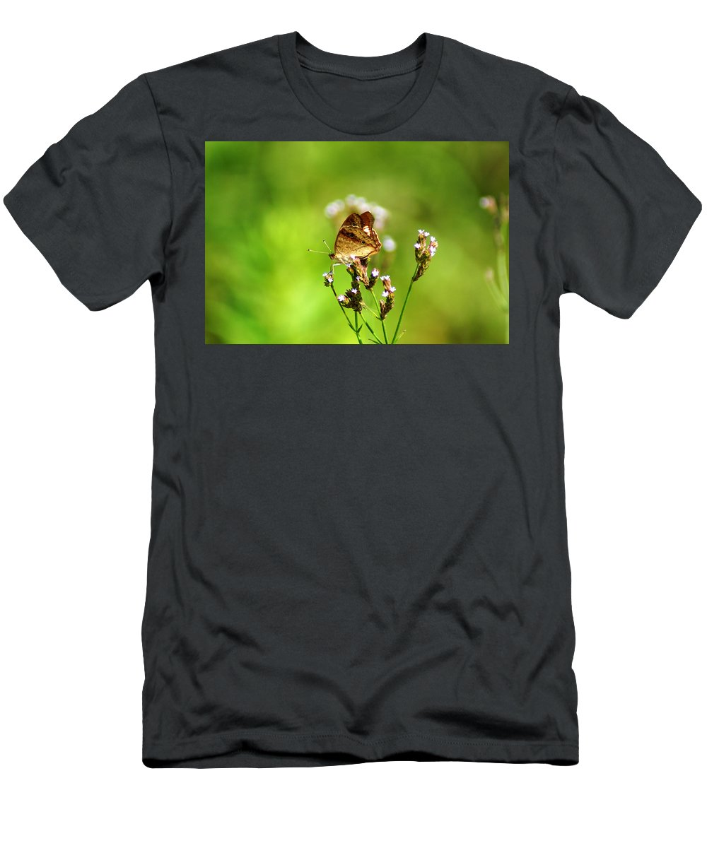 The White Peacock Butterfly Men's T-Shirt (Athletic Fit) featuring the photograph Anartia Jatrophae by Kim Pate