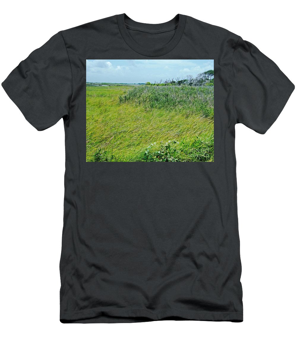 Texas Men's T-Shirt (Athletic Fit) featuring the photograph Aransas Nwr Coastal Grasses by Lizi Beard-Ward