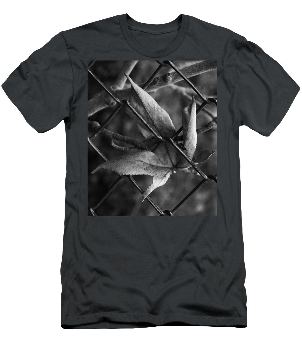 Leaf Men's T-Shirt (Athletic Fit) featuring the photograph Around The Park by The Artist Project