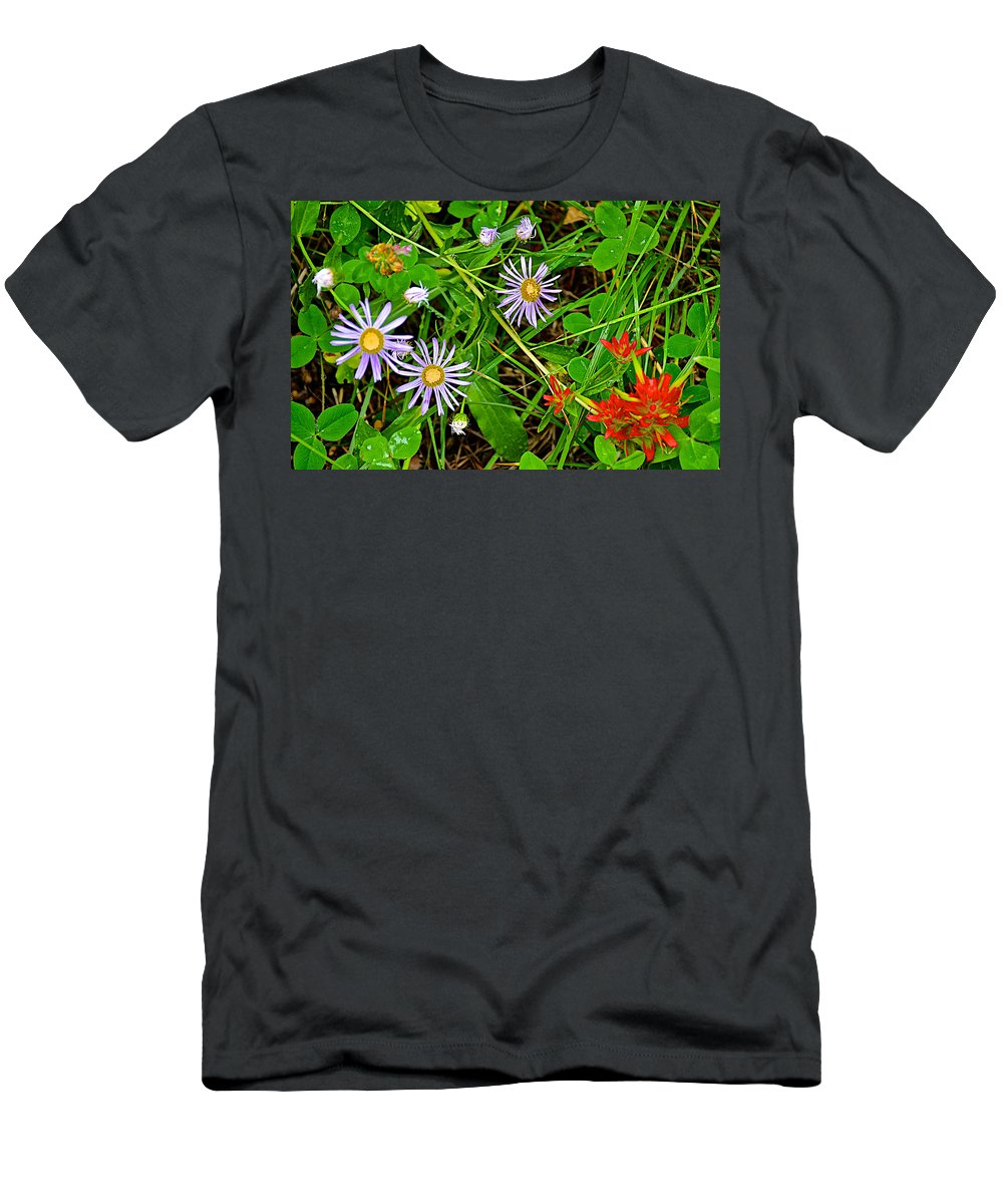 Asters And Scarlet Paintbrush On Trail To Swan Lake In Grand Teton National Park Men's T-Shirt (Athletic Fit) featuring the photograph Asters And Scarlet Paintbrush On Swan Lake Trail In Grand Teton National Park-wyoming by Ruth Hager