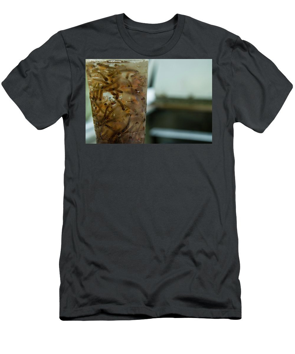 Drop Men's T-Shirt (Athletic Fit) featuring the photograph Atlantic Salmon Stocking by Joe Klementovich
