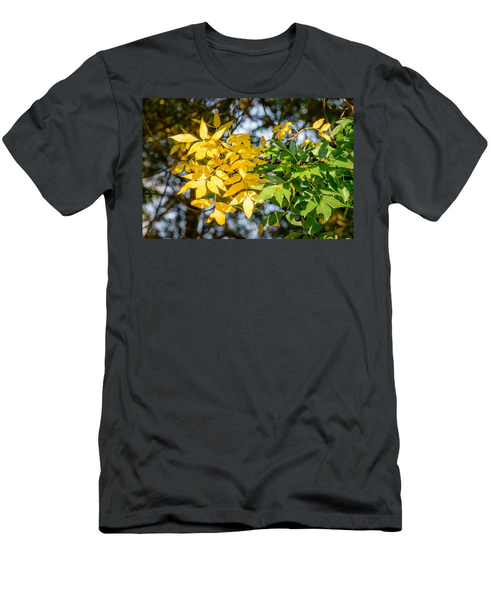 Ash Men's T-Shirt (Athletic Fit) featuring the photograph Autumn Ash Tree Leaves Under The Sun by Alain De Maximy