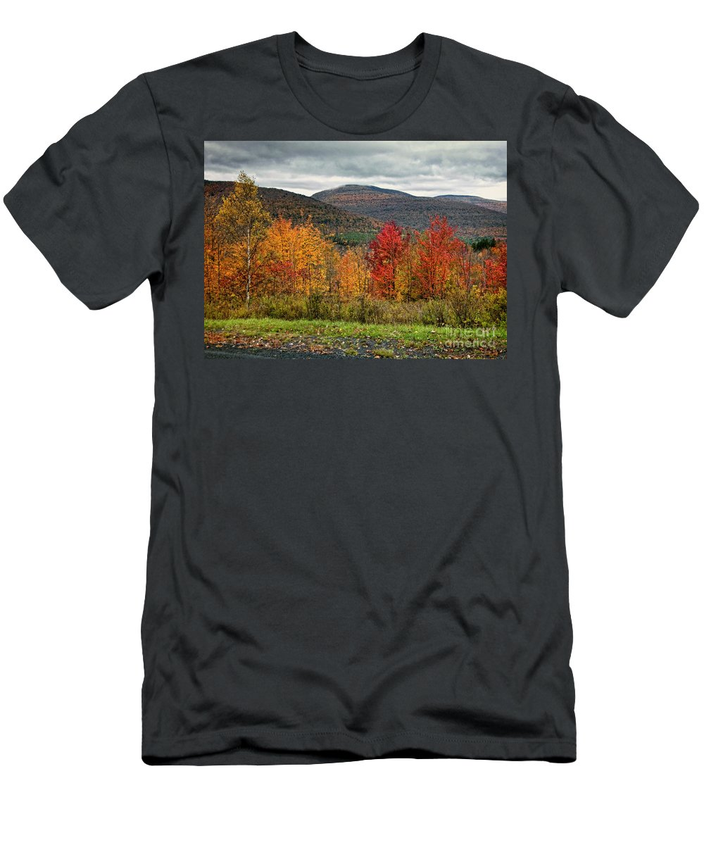 Catskills Men's T-Shirt (Athletic Fit) featuring the photograph Autumn Colors by Claudia Kuhn