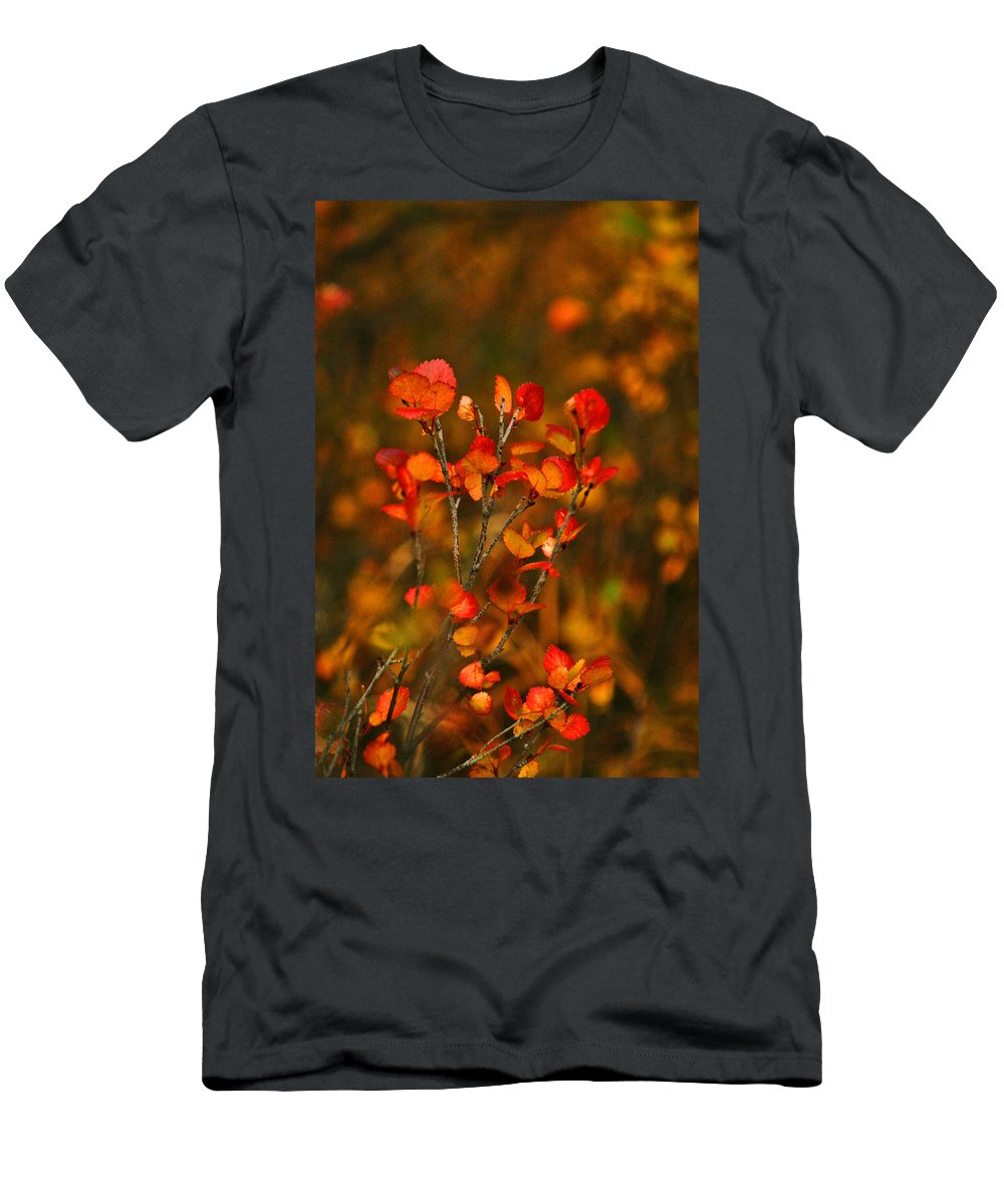 Autumn Men's T-Shirt (Athletic Fit) featuring the photograph Autumn Emblem by Jeremy Rhoades