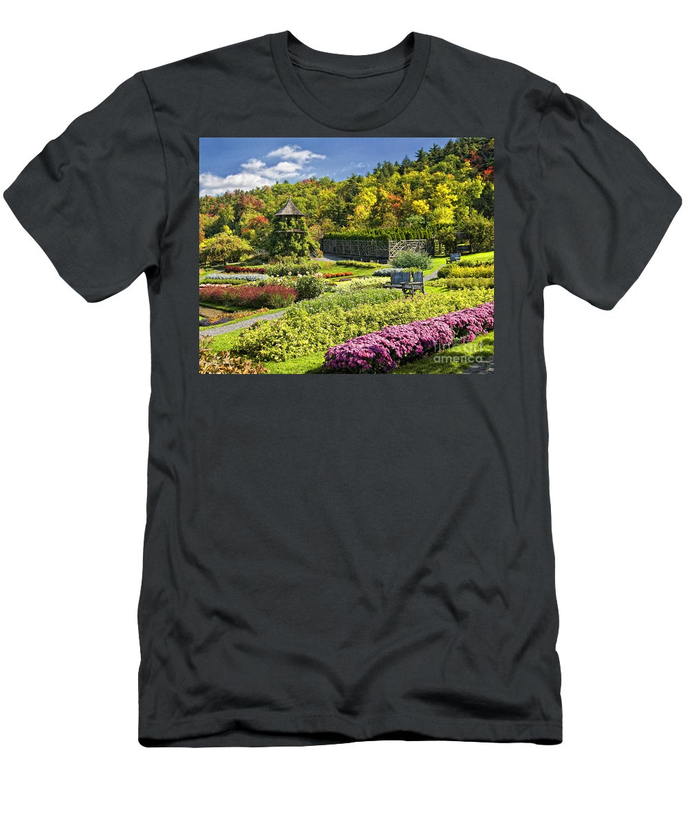 Mohonk Men's T-Shirt (Athletic Fit) featuring the photograph Autumn Garden by Claudia Kuhn