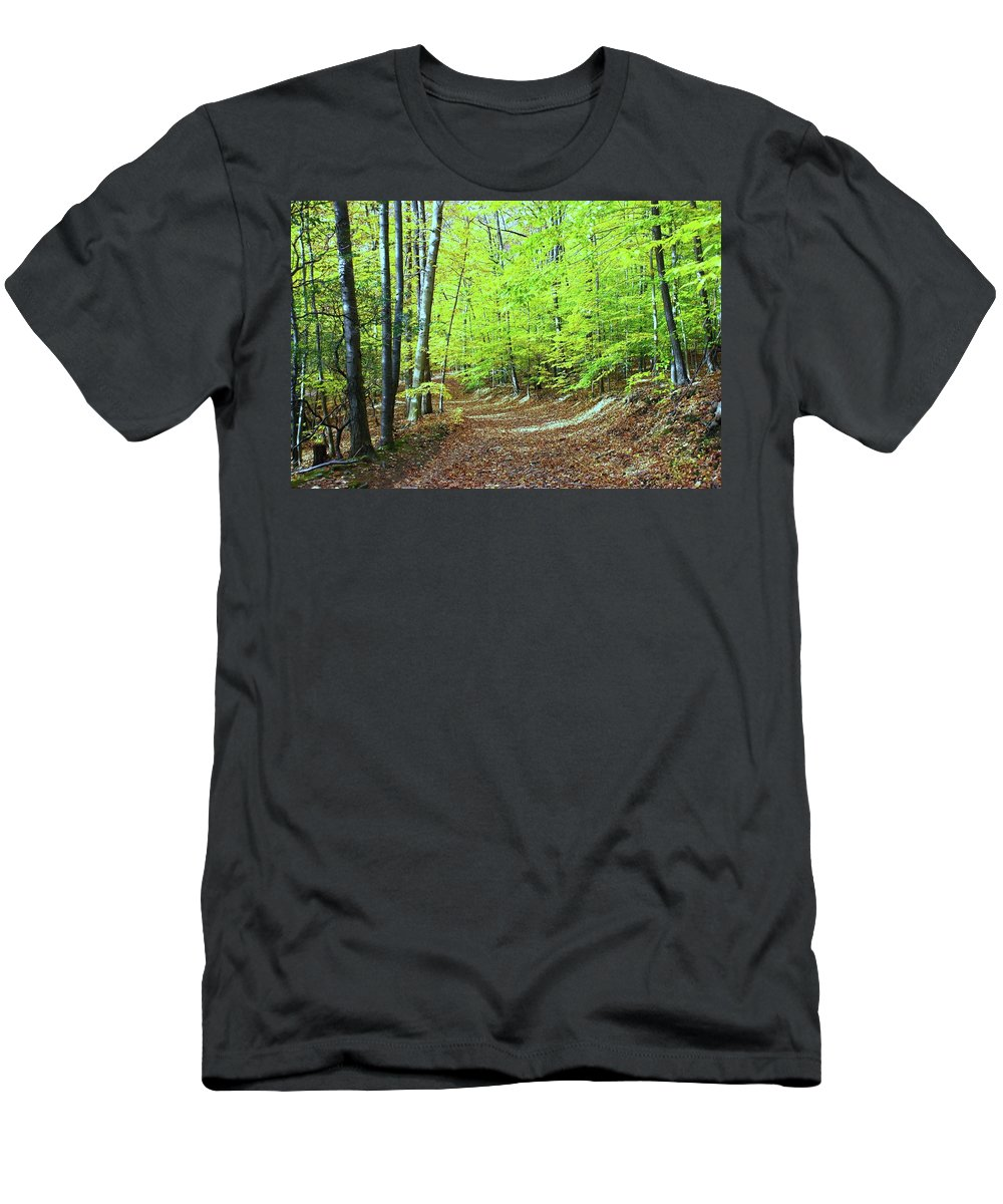 Eagle Rock Reservation Men's T-Shirt (Athletic Fit) featuring the photograph Autumn Gold 3 by Allen Beatty