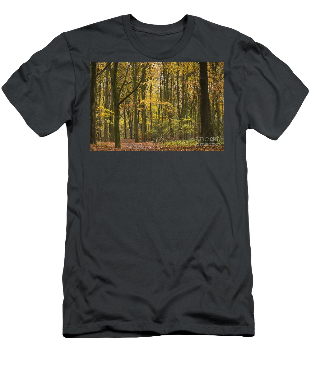 Atmospheric Men's T-Shirt (Athletic Fit) featuring the photograph Autumn Gold by Anne Gilbert