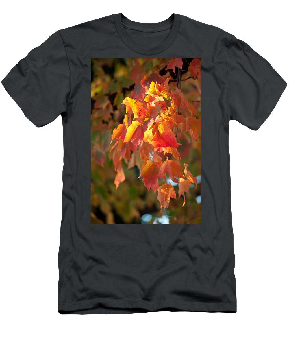 Autumn Men's T-Shirt (Athletic Fit) featuring the photograph Autumn by Sebastian Musial