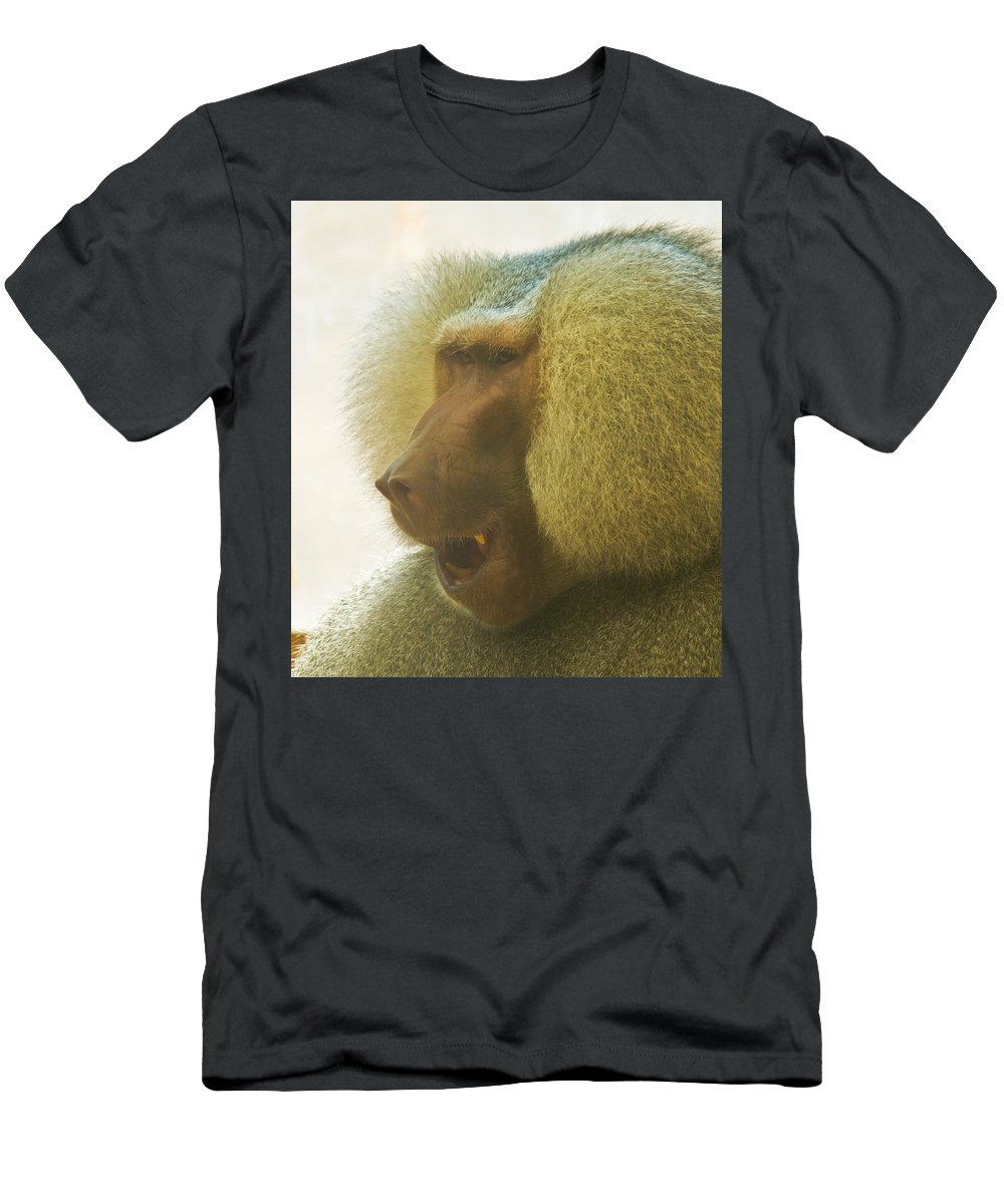 Baboon Men's T-Shirt (Athletic Fit) featuring the photograph Baboon In The Sun by Jonny D