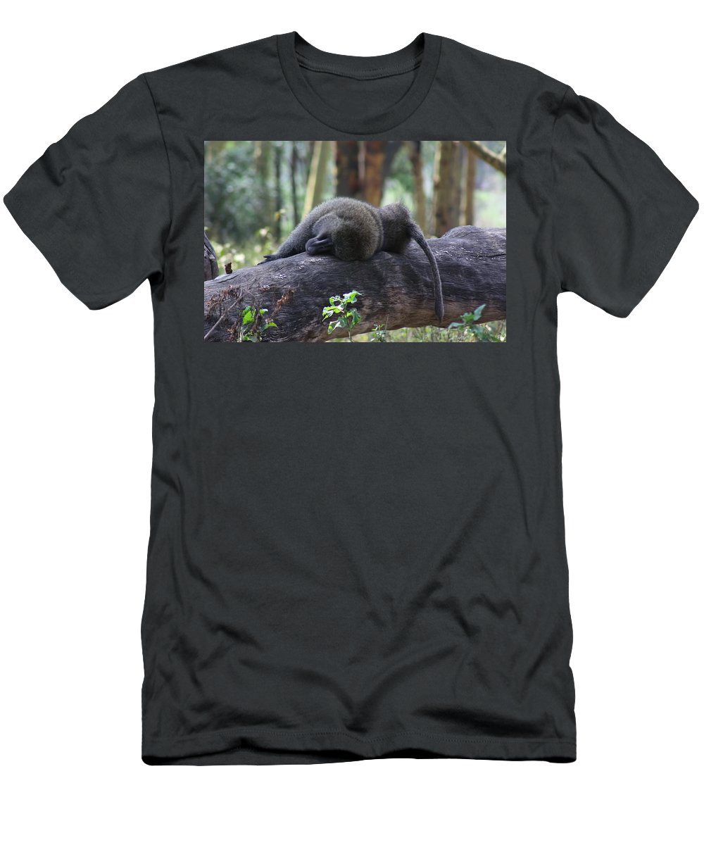 Baboon Sleeping On A Log Men's T-Shirt (Athletic Fit) featuring the photograph Baboon Sleeping by Amanda Stadther