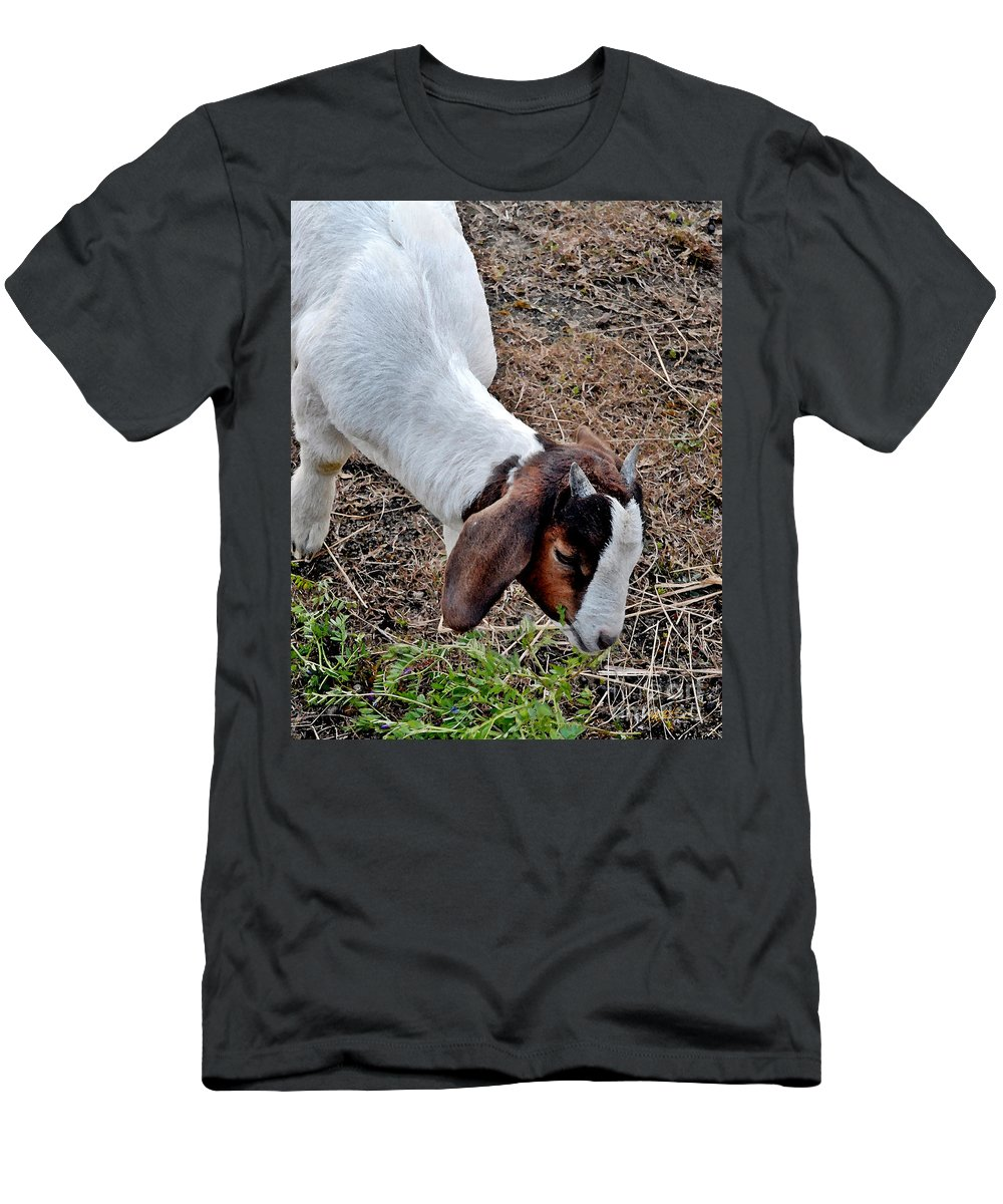 Goat Men's T-Shirt (Athletic Fit) featuring the photograph Baby Goat by Jeff McJunkin