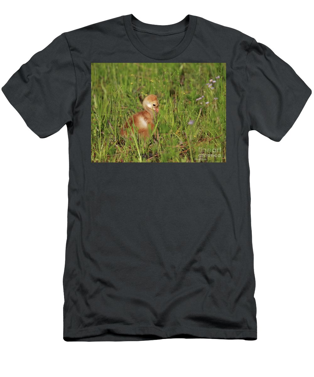 Sandhill Chick Men's T-Shirt (Athletic Fit) featuring the photograph Baby Sandhill Crane Chick by Deborah Benoit