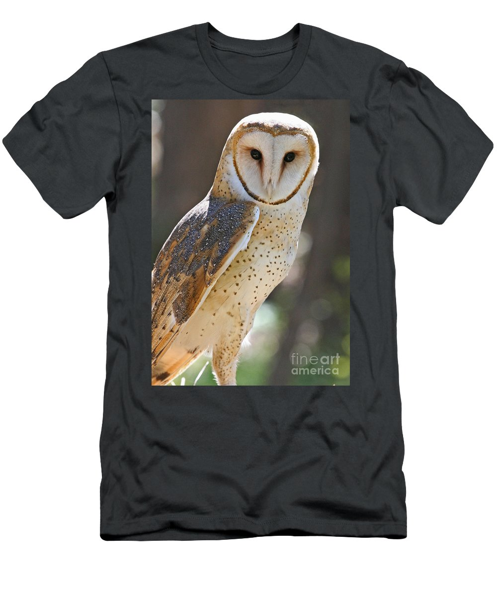 Alba Men's T-Shirt (Athletic Fit) featuring the photograph Barn Owl Raptor by Kevin McCarthy