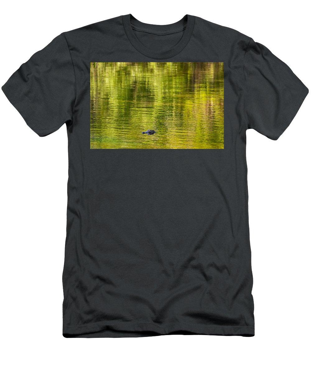 Gator Men's T-Shirt (Athletic Fit) featuring the photograph Bayou Dream by Steve Harrington
