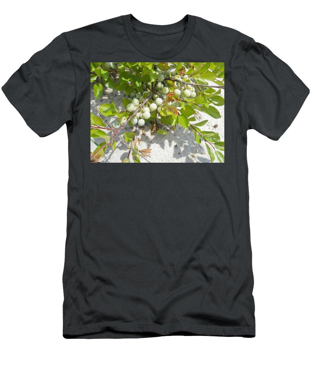 Shrub Men's T-Shirt (Athletic Fit) featuring the photograph Beach Plum - Prunus Maritima - Island Beach State Park Nj by Mother Nature