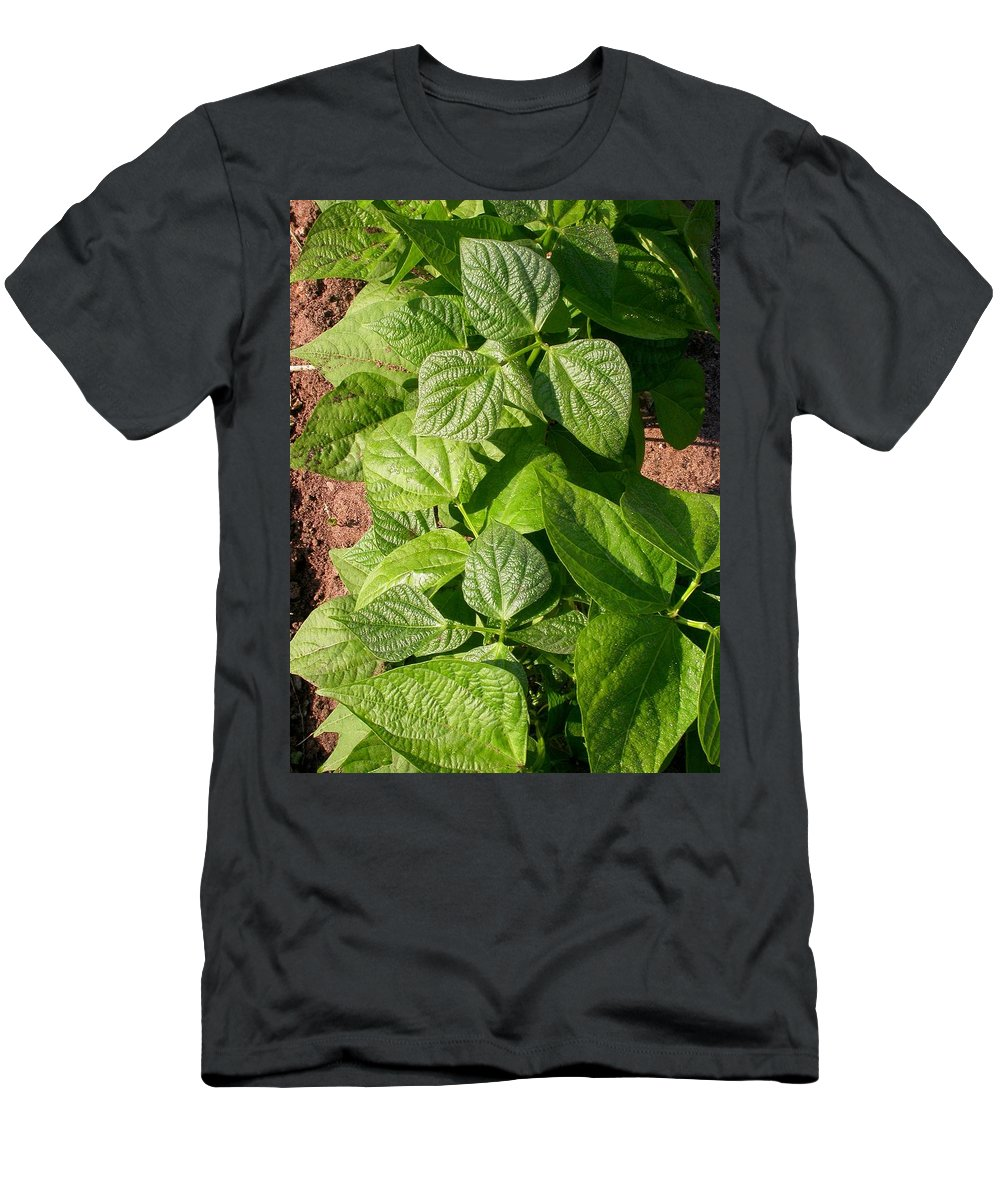 Farm Pictures Men's T-Shirt (Athletic Fit) featuring the photograph Beans In A Row by Cynthia Wallentine