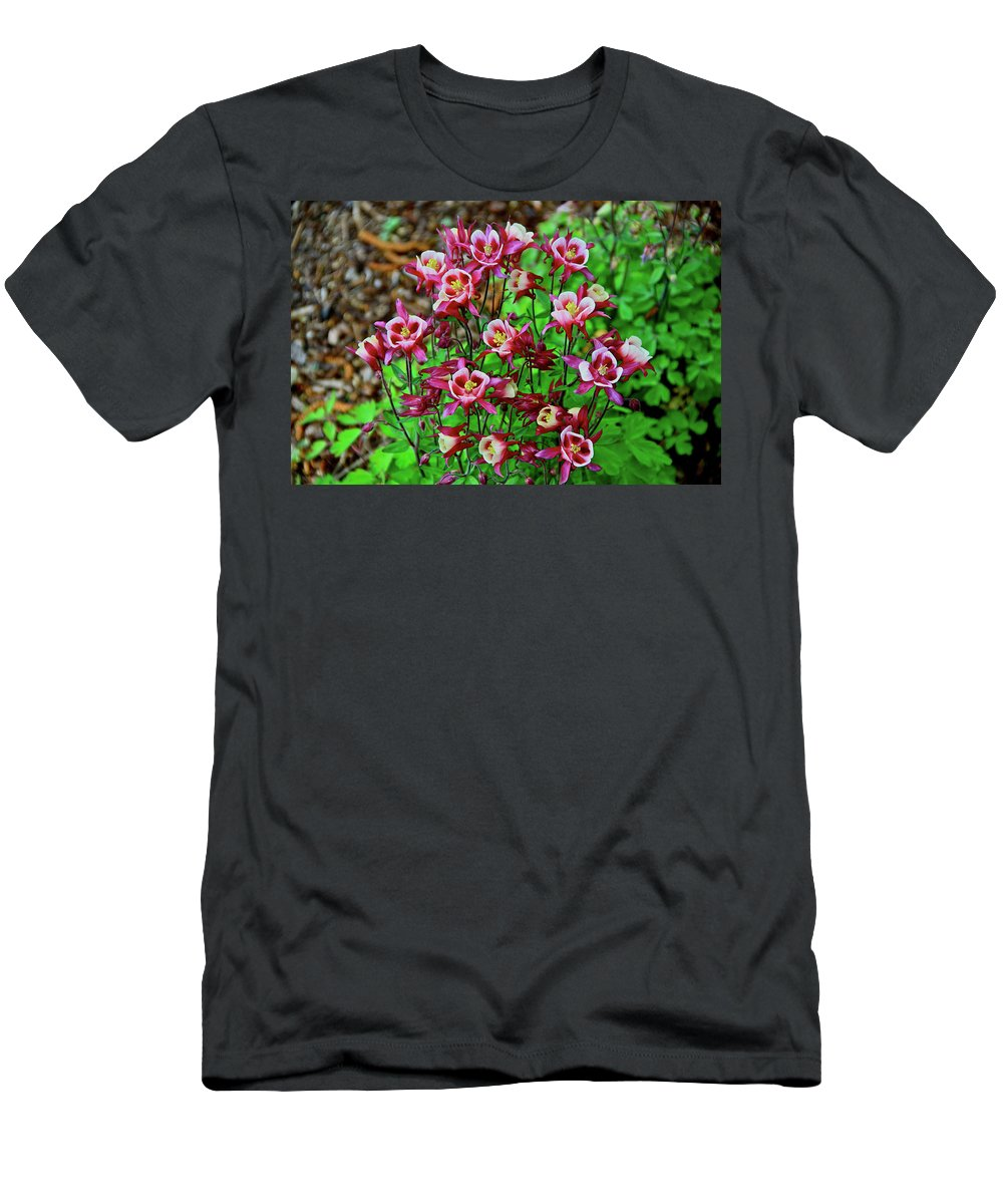 Columbine Men's T-Shirt (Athletic Fit) featuring the photograph Beautiful Columbine  by Ed Riche