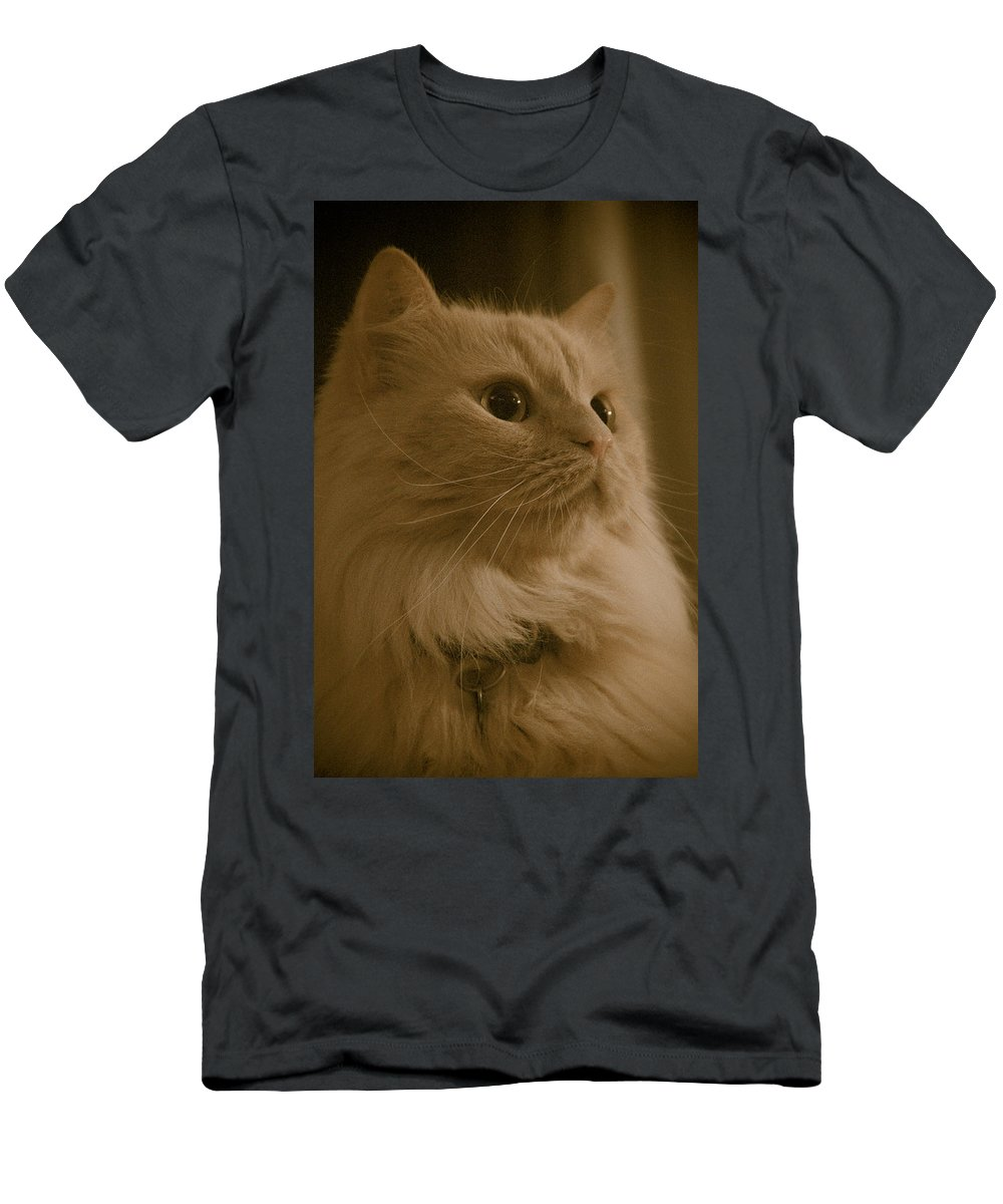 Men's T-Shirt (Athletic Fit) featuring the photograph Beautiful Creamy Persian Cat Mix Portrait by Eti Reid