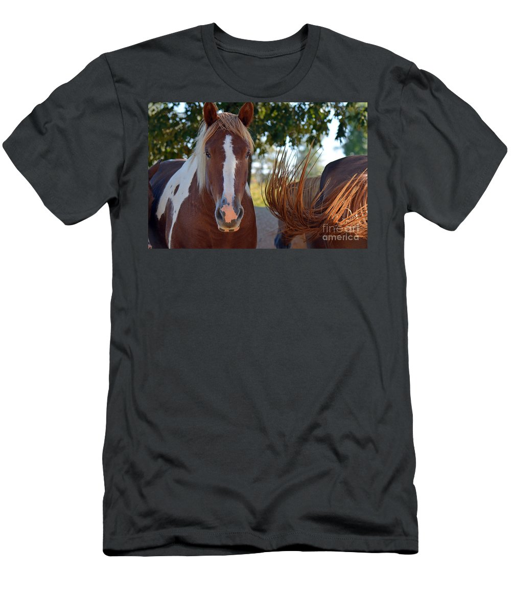 Horses Men's T-Shirt (Athletic Fit) featuring the photograph Beauty And The Swish by Barb Dalton