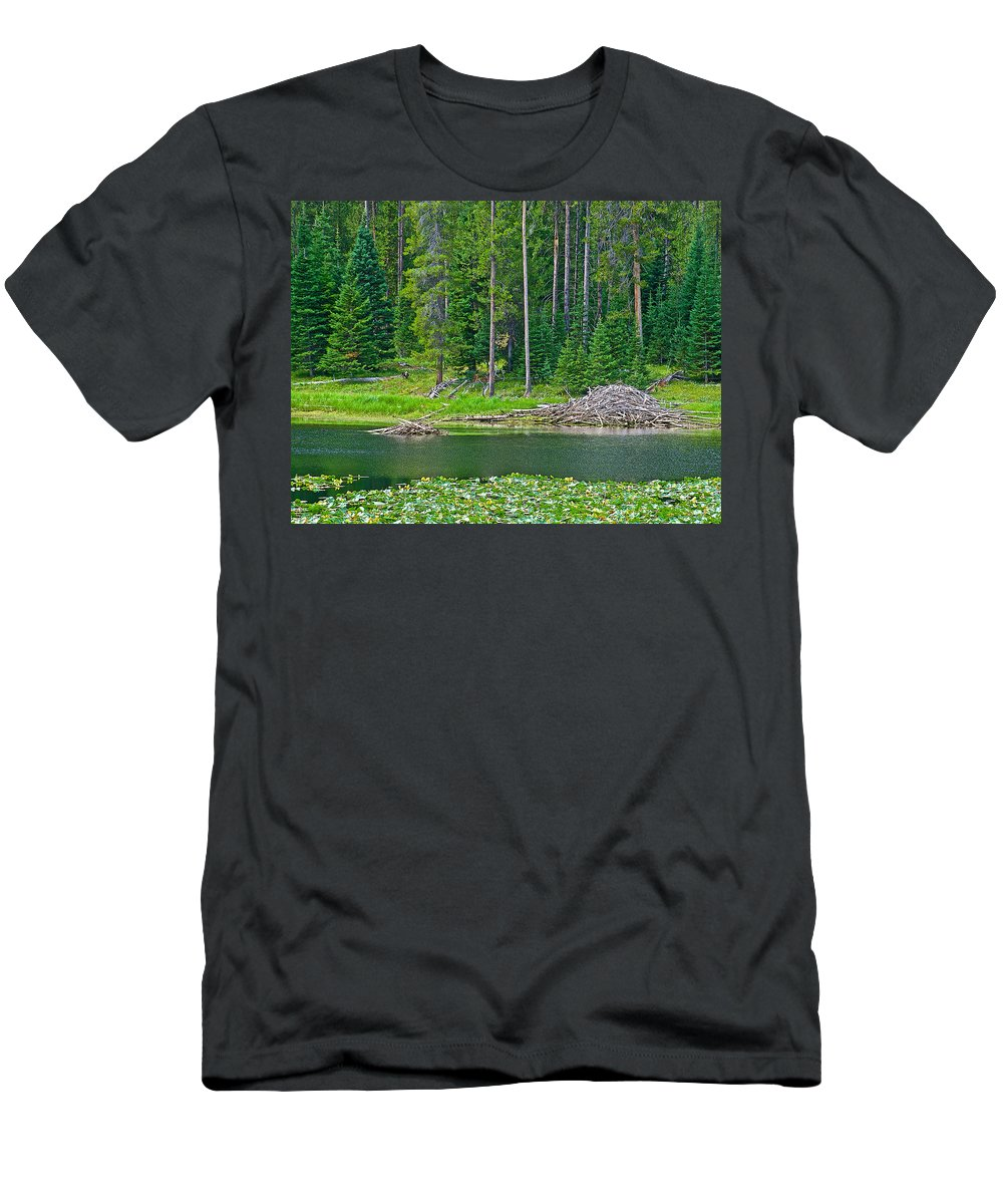 Beaver Dam In Heron Pondl In Grand Teton National Park Men's T-Shirt (Athletic Fit) featuring the photograph Beaver Dam In Heron Pond In Grand Teton National Park-wyoming by Ruth Hager