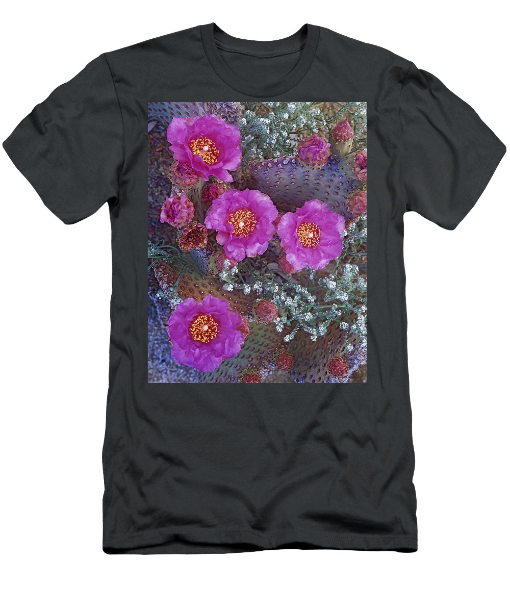 Feb0514 Men's T-Shirt (Athletic Fit) featuring the photograph Beavertail Cactus Flowering North by Tim Fitzharris