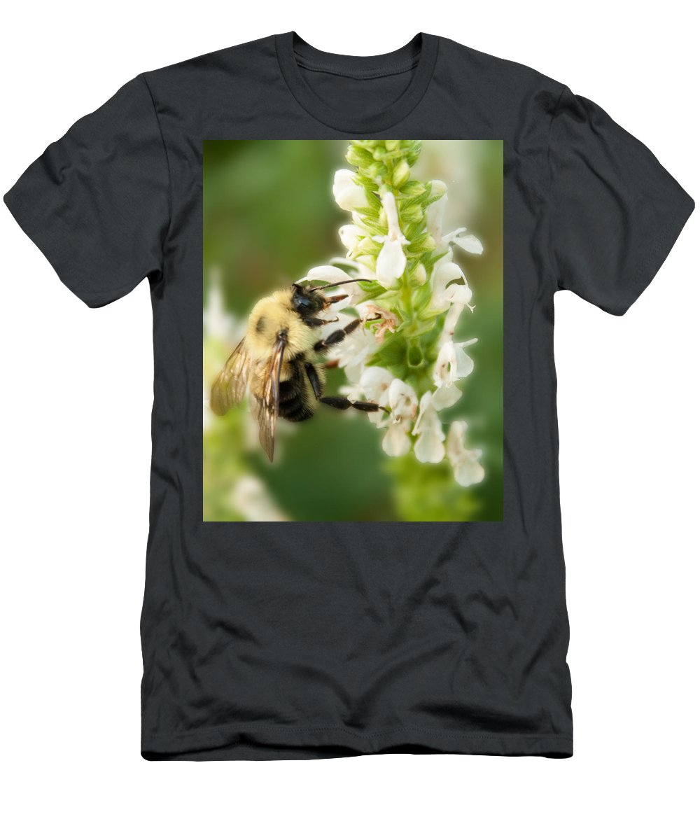Bee Men's T-Shirt (Athletic Fit) featuring the photograph 'bee'autiful Morning by Michael Porchik