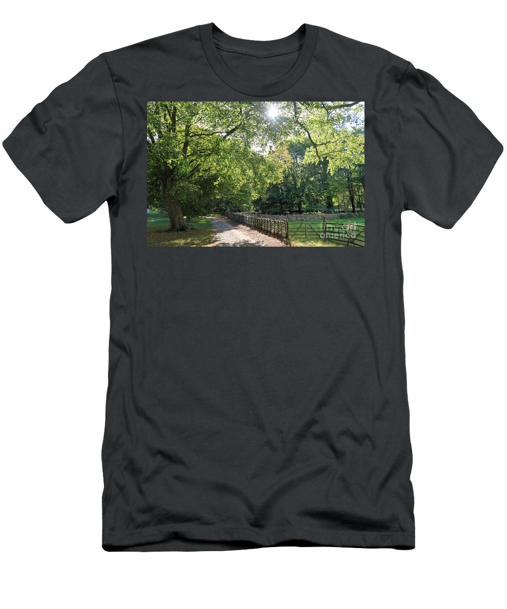 Beech Tree Britain Men's T-Shirt (Athletic Fit) featuring the photograph Beech Avenue Britain by Julia Gavin