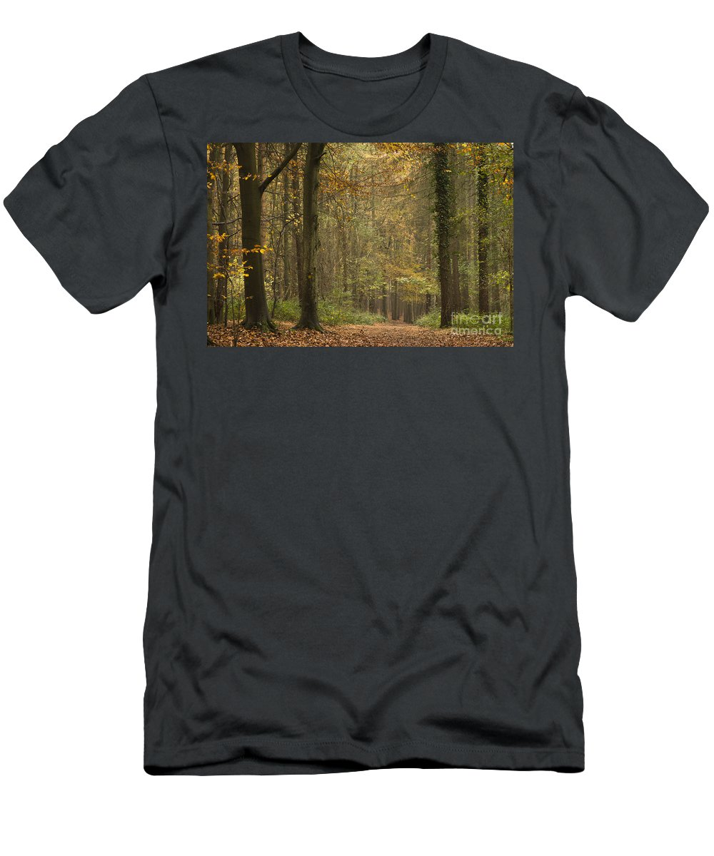 Atmospheric Men's T-Shirt (Athletic Fit) featuring the photograph Beech Wood Walk by Anne Gilbert