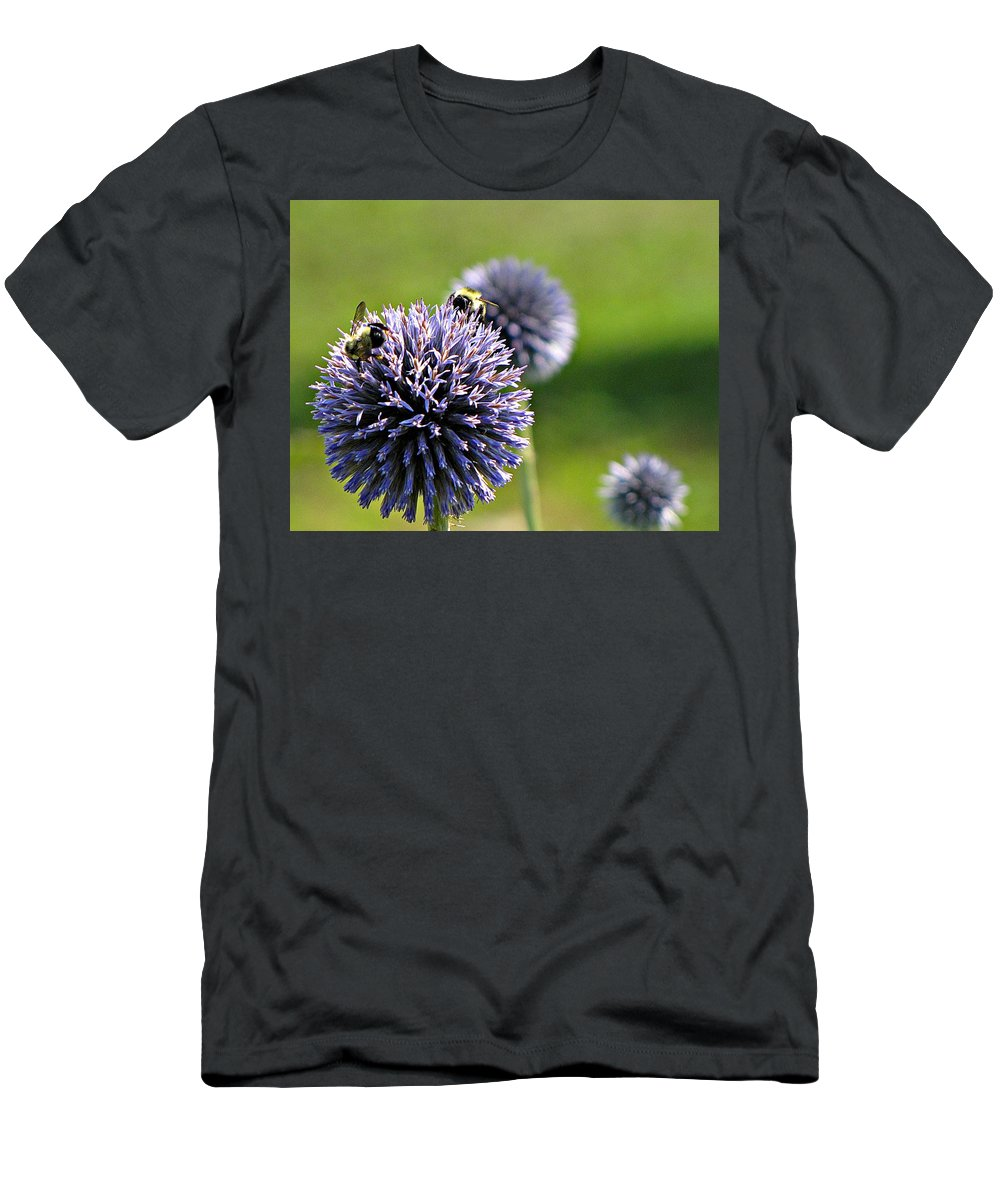 Bumblebees Men's T-Shirt (Athletic Fit) featuring the photograph Bees On Globes by MTBobbins Photography
