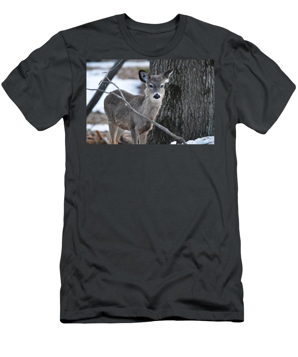 Whitetail Men's T-Shirt (Athletic Fit) featuring the photograph Behind A Branch by Linda Kerkau