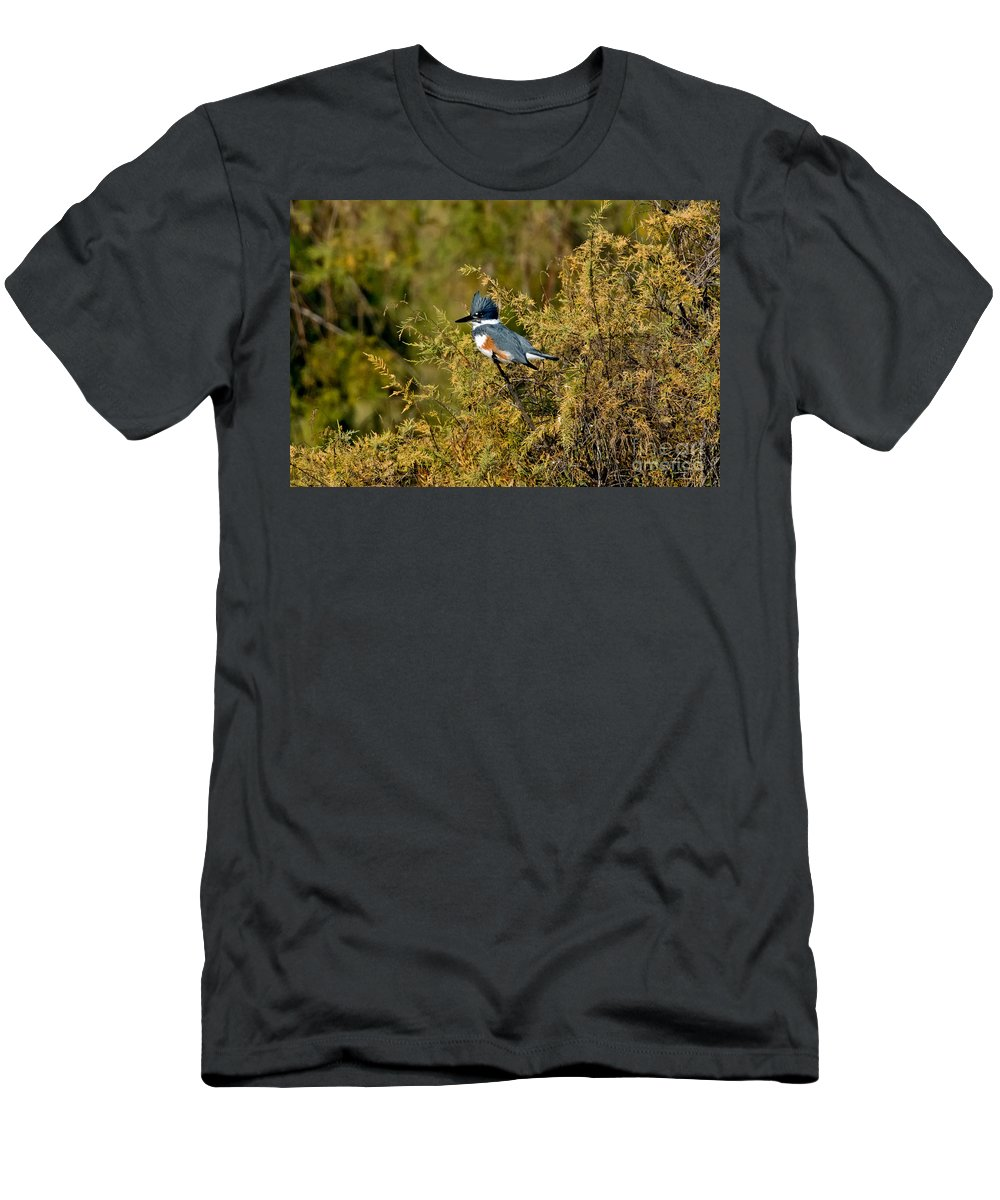 Vertical Men's T-Shirt (Athletic Fit) featuring the photograph Belted Kingfisher Female by Anthony Mercieca