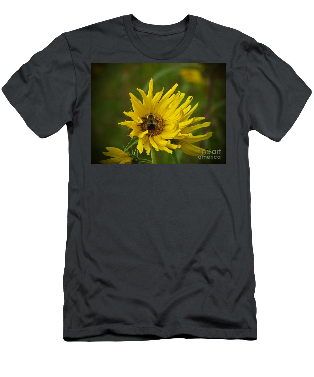 Bumble Bee Men's T-Shirt (Athletic Fit) featuring the photograph Big Beautiful Bumble Bee On Flower by Minding My Visions by Adri and Ray