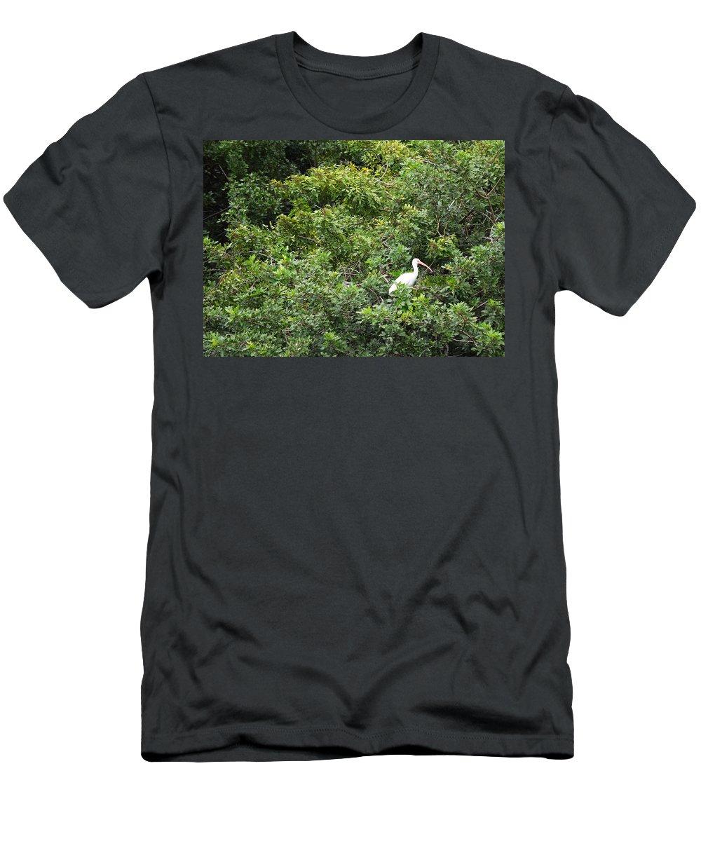Florida Men's T-Shirt (Athletic Fit) featuring the photograph Bird In Bush by Linda Kerkau